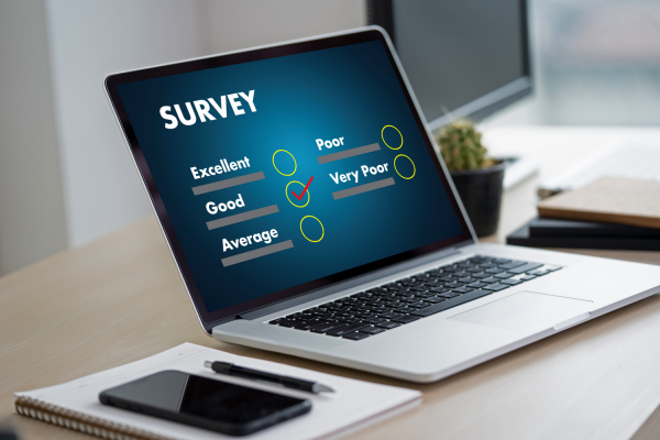 Earn Money In Your Free Time: Taking A Survey